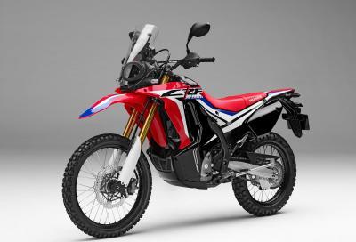 Honda CRF250 Rally: spirito da Dakar