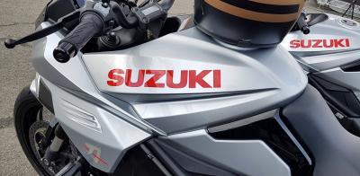 I modelli Suzuki 2019