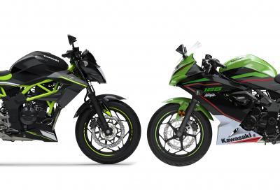 Kawasaki: ecco Z125 e Ninja 125 in versione 2021