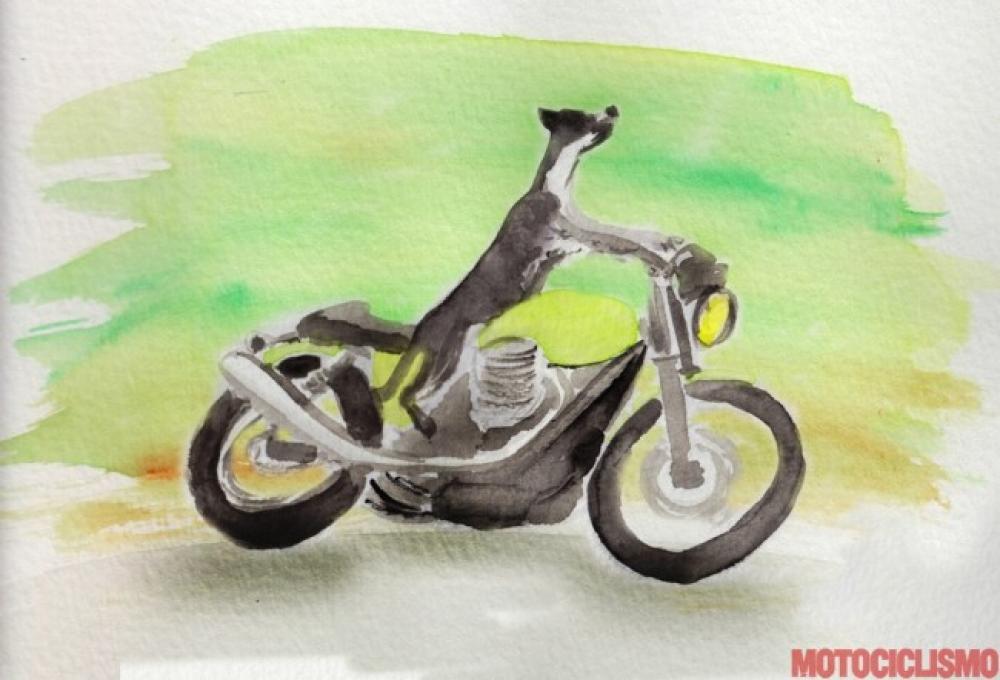 Acquarello di Alessandro Motti per Motociclismo