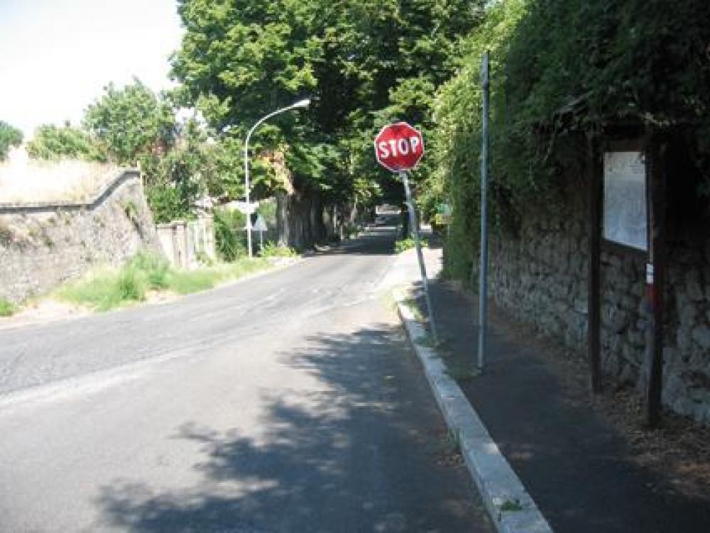 Molte volte i cartelli stradali sono illeggibili in quanto coperti dalla vegetazione o in posizioni nascoste