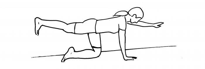 Cane volante/bird dog: A quattro zampe, con le mani sotto le spalle e le ginocchia sotto le anche, estendi nello stesso tempo una gamba e il braccio opposto. Devi formare una linea retta tra mano, bacino e piede. Mantieni la posizione dai 2 ai 5 secondi e ripeti con gamba e braccio opposto. Fai 10 ripetizioni per gamba + braccio.